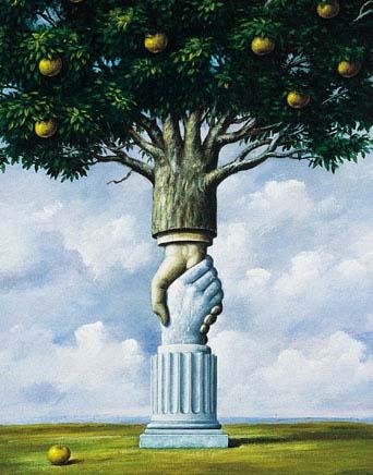 Symbolisme des arbres